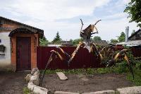 Умелец из Богородицка, Фото: 7