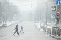 Мартовский снег в Туле, Фото: 45