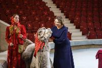 Пресс-конференция в Тульском цирке, Фото: 15