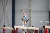 Соревнования по спортивной гимнастике на призы Заслуженных мастеров спорта , Фото: 48