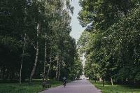Летний день в богородицком парке, Фото: 49