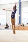 Спортивная гимнастика в Туле 3.12, Фото: 172