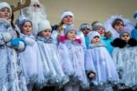 Битва Дедов Морозов. 30.11.14, Фото: 70