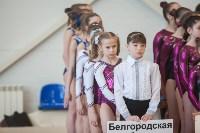 Первенство ЦФО по спортивной гимнастике, Фото: 31
