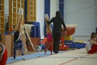 Спортивная гимнастика в Туле 3.12, Фото: 39