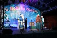 Открытие новогодней ёлки в Тульском кремле, Фото: 4
