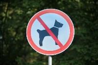 Рейд против незаконного выгула собак в парке. 30.07.2015, Фото: 1