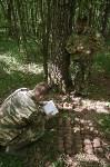 В лесу под Тулой поисковики нашли тайник с гранатами, Фото: 17