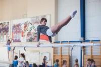 Мужская спортивная гимнастика в Туле, Фото: 15
