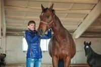 «Куликово поле» объявляет конкурс на лучшее имя для маленькой лошадки, Фото: 4