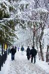 Тула после снегопада. 23.12.2014, Фото: 15