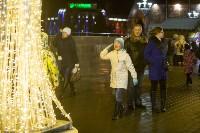 В Туле завершились новогодние гуляния, Фото: 10