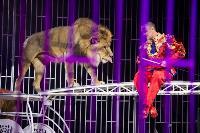 Шоу фонтанов «13 месяцев»: успей увидеть уникальную программу в Тульском цирке, Фото: 209
