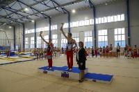 Спортивная гимнастика в Туле 3.12, Фото: 74