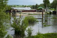 Дедилово затопило, Фото: 6