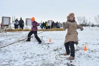 Праздник северных собак на Куликовом поле , Фото: 101
