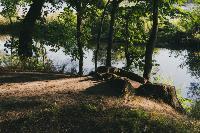 Летний день в богородицком парке, Фото: 37