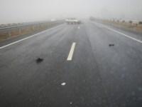 Аварии на трассе Тула-Новомосковск. , Фото: 27