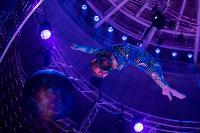 Шоу фонтанов «13 месяцев»: успей увидеть уникальную программу в Тульском цирке, Фото: 105