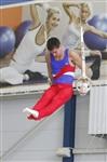 Первый этап Всероссийских соревнований по спортивной гимнастике среди юношей - «Надежды России»., Фото: 6