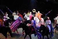 Цирк «Вива, Зорро!» в Туле , Фото: 89