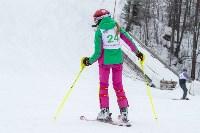 Третий этап первенства Тульской области по горнолыжному спорту., Фото: 44