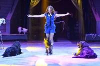 Цирковое шоу, Фото: 51