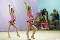 Соревнования «Первые шаги в художественной гимнастике», Фото: 75