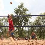 Пляжный волейбол в Барсуках, Фото: 116