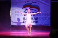 Мисс Тульская область - 2014, Фото: 340