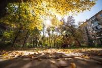 Золотая осень в Тульской области, Фото: 75