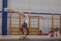 Первенство ЦФО по спортивной гимнастике, Фото: 163