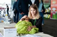 Благотворительный фестиваль помощи животным, Фото: 1