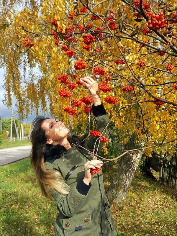 ...Нежно гладит куст рябины - осень влажною рукой: Ягод красные рубины и багряных листьев рой...