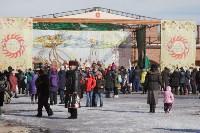 В Тульском кремле проходят масленичные гуляния, Фото: 42
