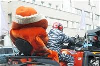 Тигры в городе!, Фото: 4