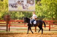 Новые лошади для конной полиции в Центральном парке, Фото: 5