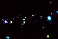 Концерт Гелы Гуралия в Туле, Фото: 1
