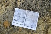 Документы клиентов страховой компании летают по улице, Фото: 13