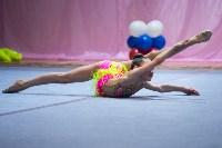 Соревнования по художественной гимнастике 31 марта-1 апреля 2016 года, Фото: 107