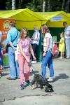 В Центральном парке Тулы проходит фестиваль помощи животным, Фото: 29