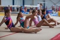 Тульские гимнастки готовятся к первенству России, Фото: 31