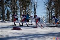 Состязания лыжников в Сочи., Фото: 41
