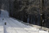 Зимняя сказка Платновского парка, Фото: 23