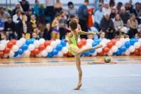 Открытый кубок региона по художественной гимнастике, Фото: 37