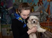 Выставка собак DogLand, Фото: 8