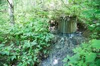 В реку Иншинку несколько лет стекает канализация, Фото: 5