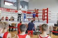Чемпионат ЦФО по боксу, Фото: 29