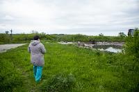 В Тульской области Богородицкий район атаковали мошки, Фото: 18