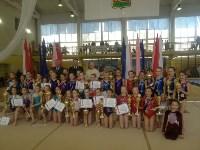 Туляки на соревнованиях по спортивной гимнастике в Брянске., Фото: 7